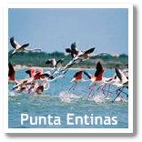 Punta Entinas Wetland in Roquetas de Mar (Almeria, Spain)