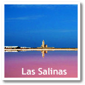Salt Marshes (Las Salinas) in Cabo de Gata Natural Park (Almeria, Spain)