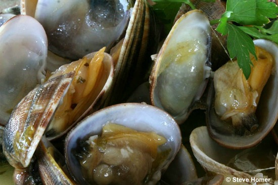 Clams Recipe