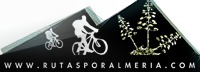 Cycling Tours Spain