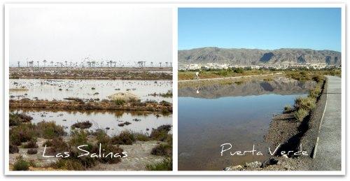 Roquetas de Mar: Las Salinas and Puerta Verde