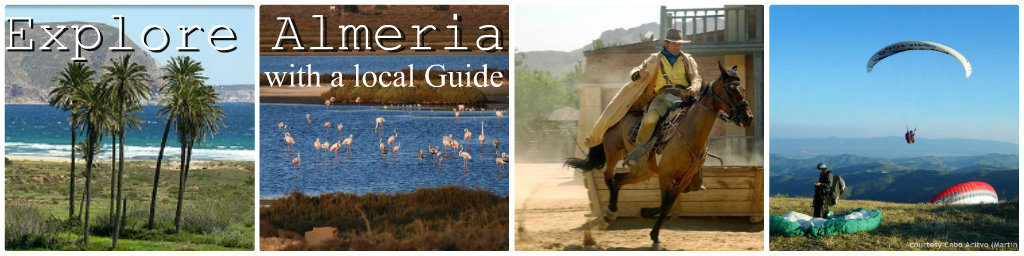 Spain Guided Tours