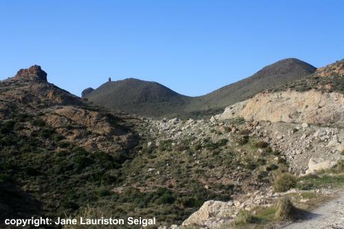 Cabo de Gata - Tower Higuera