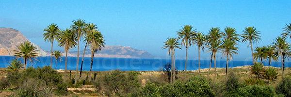 El Playazo Beach Rodalquilar (Almeria, Spain) - Cabo de Gata