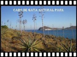 Visit Cabo de Gata Natural Park here >>