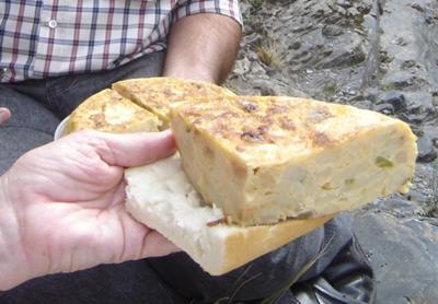 picnic of tortilla