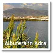 La Albufera in Adra (Almeria, Spain)